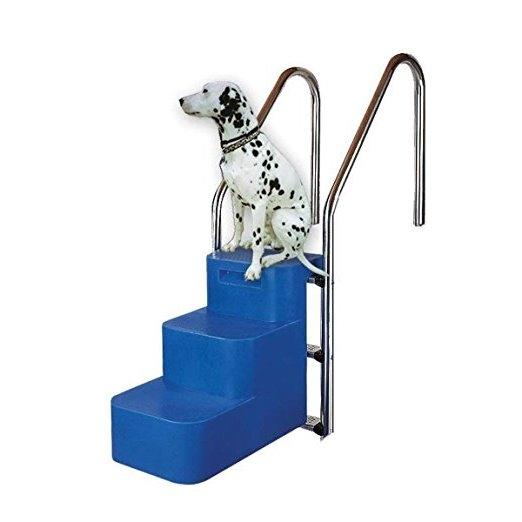 Scaletta per piscina per cani ladivinapiscina for Piscina montabile
